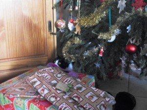Un lundi parmi tant d'autres : Noël 2011 dans un lundi parmi tant d'autres SDC18243-300x225