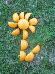 O-comme-Orange-Romain-Capucine-Orphée-et-Cyrian-225x300 école photo de la semaine PetitEclair dans à l'école